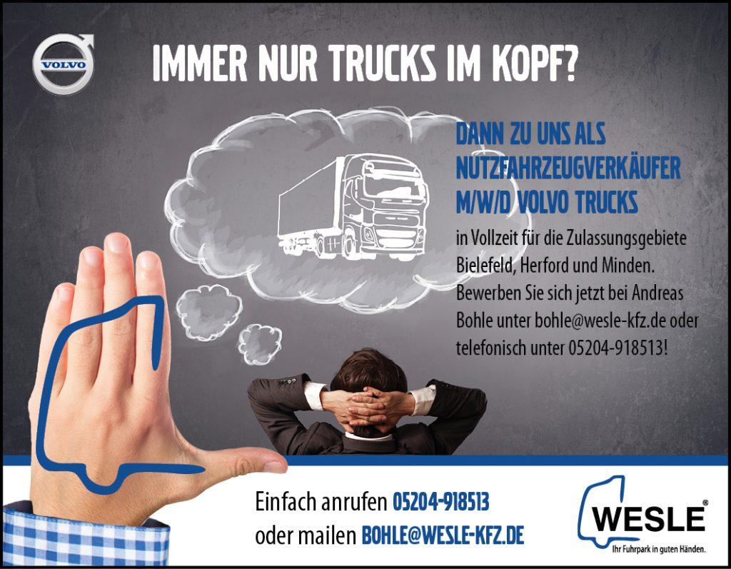 Wesle-Ebay-Stellenanzeige_Nutzfahrzeugverkäufer1,4
